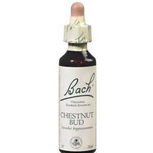 Bach Chestnut bud n°07