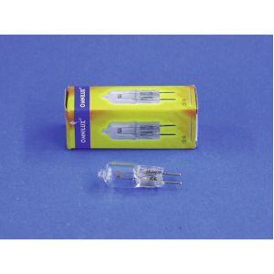 Omnilux Ampoule halogène pour effet lumineux Studiolampe 24 V GY6.35 100 W blanc