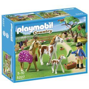 Playmobil 5227 Country - Chevaux et enclos