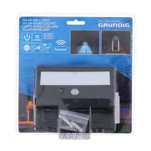 Grundig Lampe solaire LED avec détecteur 1xLED/0,25W/1xAA