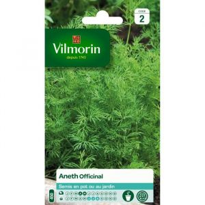Vilmorin Aneth Officinal - Sachet graines