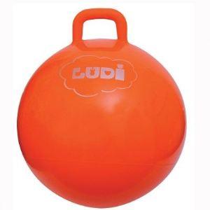 Ludi Ballon sauteur 55 cm