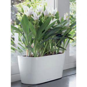 Lechuza Mini-jardinière Delta 20 blanc