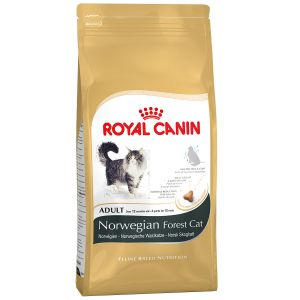 Royal Canin Feline Breed Nutrition Norwegian Forest Adult - Sac 400 g
