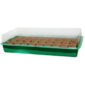"""Nortene Mini serre """"Growing Kit"""" avec plaque biodégradable - 6 x 6 cm"""
