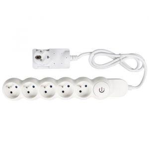 Expert Line EXPERTLINE Bloc multiprise 5 prises avec interrupteur a pied 16 A câble H05VVF 3x1 mm²
