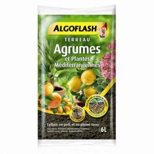 Algoflash Terreau Agrumes et Plantes Méditerranéennes 6L