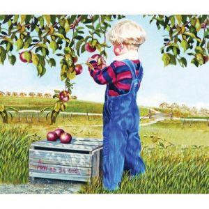 Sunsout Patricia Bourque - Apple Picking