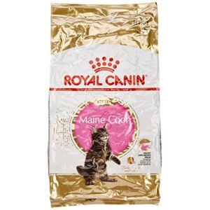 royal canin croquettes pour chaton maine coon 10 kg. Black Bedroom Furniture Sets. Home Design Ideas