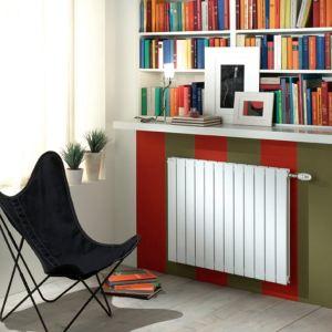 Acova HXD-070-051 Fassane horizontal - Chauffage central 620 Watts H:70 cm