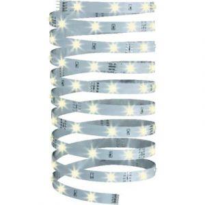 Paulmann Bande d'éclairage décoratif YourLed de 5m, 70 255 Led blanc