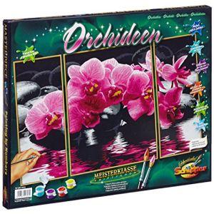 Schipper Peinture par numéro Orchidées