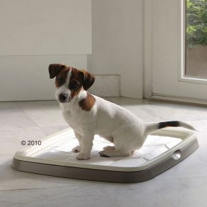 Savic 7 tapis toilettes Puppy Trainer pour chiot taille XL