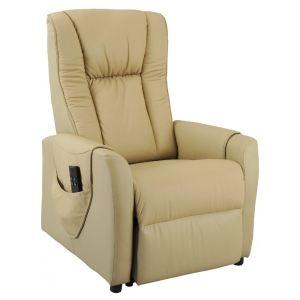 fauteuil releveur electrique 2 moteurs comparer 567 offres. Black Bedroom Furniture Sets. Home Design Ideas