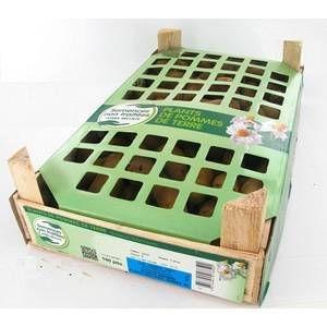 Planteo Pommes de terre Dolreine calibre 25/32, 100 plants