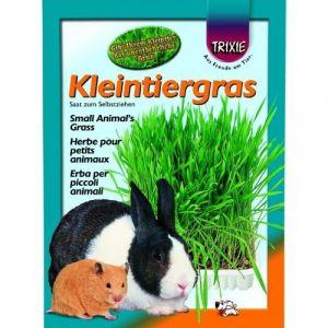 Trixie Plateau d'herbe pour rongeurs 100 g