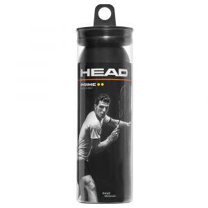 Head Balles squash Prime Dyd - Black - Taille 3 Balles