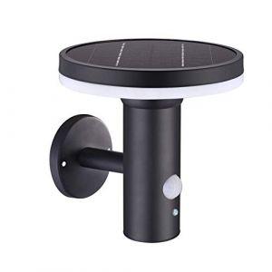 Lumisky Applique murale solaire de jardin noir LED blanc THY WALL H17cm avec détecteur de mouvement
