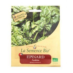 La Semence Bio Epinard America 355g - Graines bio
