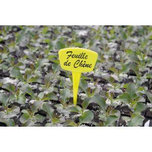 Nortene Etiquette à planter - Lot de 10 Label - 15 cm - Jaune