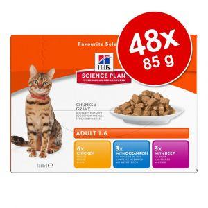 Hill's Pack de sachets pour chat 4 saveurs Hills - 12 x 85 gr
