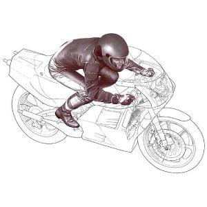 Tamiya 14123 - Maquette figurine pilote moto ligne droite - Echelle 1:12