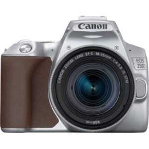 Canon Appareil photo Reflex EOS 250D Argent 18-55 IS STM