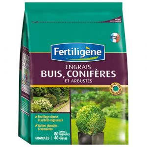 Fertiligene Engrais buis et conifères bg boîte 2 kg