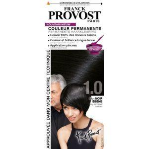 Franck Provost 1.0 Noir ébène - Couleur permanente au pinceau