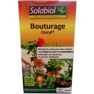 Solabiol Bouturage Osyril®