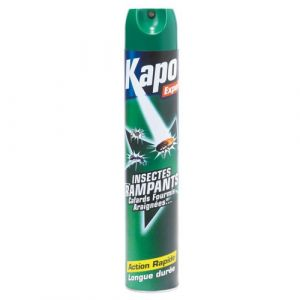 Kapo Aérosol insectes rampants - 750 mL - Insecticide - insecte rampant