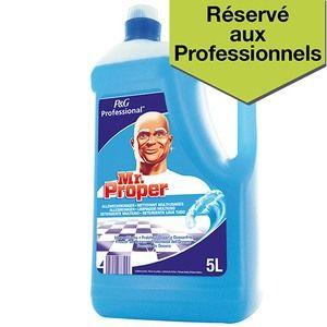 Mr. Propre Bidon de 5l nettoyant multi-usages fraîcheur hiver