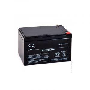 Nx Batterie plomb AGM S 12V-12Ah FR 12V 12Ah T2