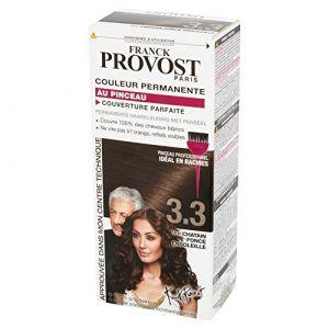 Franck Provost 3.3 Châtain foncé ensoleillé - Couleur permanente au pinceau