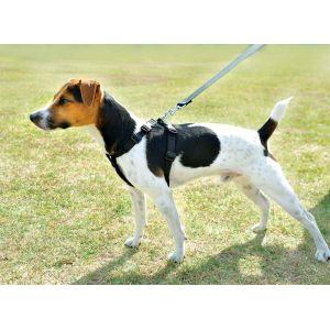 Zolux Harnais de sécurité voiture pour chien taille XL