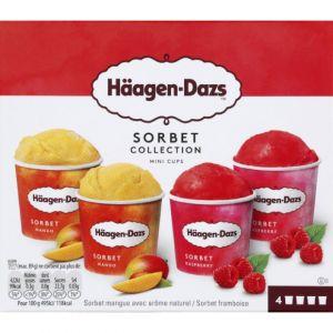 Häagen dazs Coffret de 4 Minicups Crème Glacée Sorbet Collection 4 x 95 ml