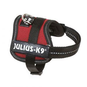 Julius K9 Harnais Power Baby 1/XS: 30-40cm bordeaux pour chien - Forme ergonomique - Très robuste - Intérieur en cuir véritable de haute qualité - Couleur : bordeaux.