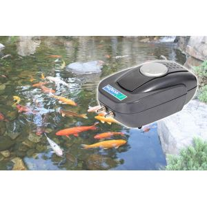 Hozelock Pompe à oxygener les bassins à poissons