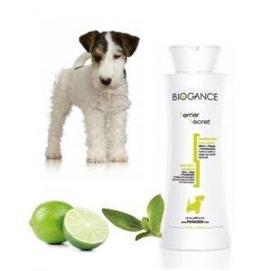 Biogance Terrier secret - Shampooing poils durs pour chien