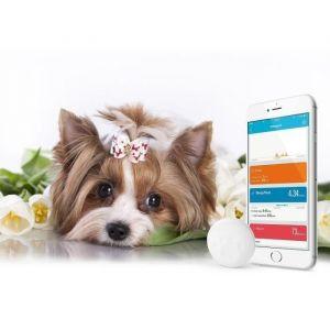 Technaxx Fittypet TX-46 - Tracker d'activité pour chien
