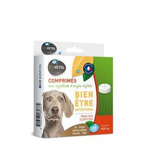 Biovetol Comprimés Bien-être intestinal moyen et grand chien x9