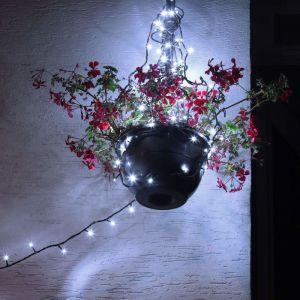 Greaden 100 LED Guirlande lumineuse IP44 Etanche blanc froid 8M Lumières féériques pr Fête de Noël Jardin Chambre Terrasse - Prise UE - Fil de cuivre, enduit de PVC vert foncé imperméable
