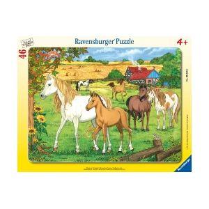 Ravensburger Puzzle cadre Chevaux dans leur enclos, 46 pièces