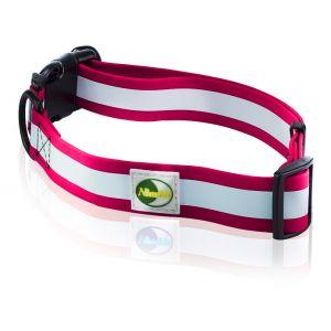 Supersteed Collier fluorescent pour chien ajustable avec boucle de fixation rapide - 210-320 mm, rose