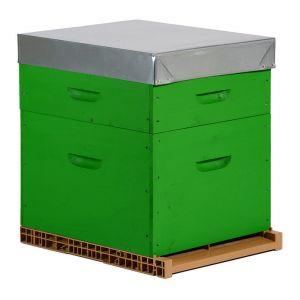 Peinture végétale 800g Plusieurs modèles disponibles Vert