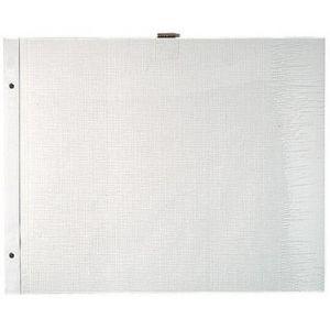 Exacompta 16812E - Sachet de 10 recharges pour album à vis pages blanches - 36x28,5cm