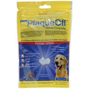 ProDen PlaqueOff Dental Croquette anti tartre pour grand chien