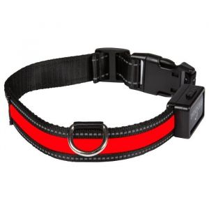 Image de Eyenimal Num'axes Red-Light USB Necklace M
