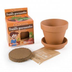 Radis et capucine Graines de Fraisier en pot de culture pour enfants