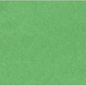 Canson Rouleau Papier de Soie - 20g - 50x50 - Vert Franc